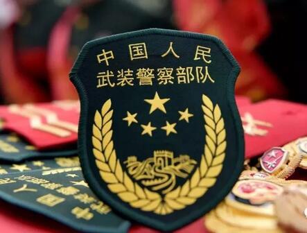 公安消防部队移交应急管理部交接仪式正式举行_中国消防网
