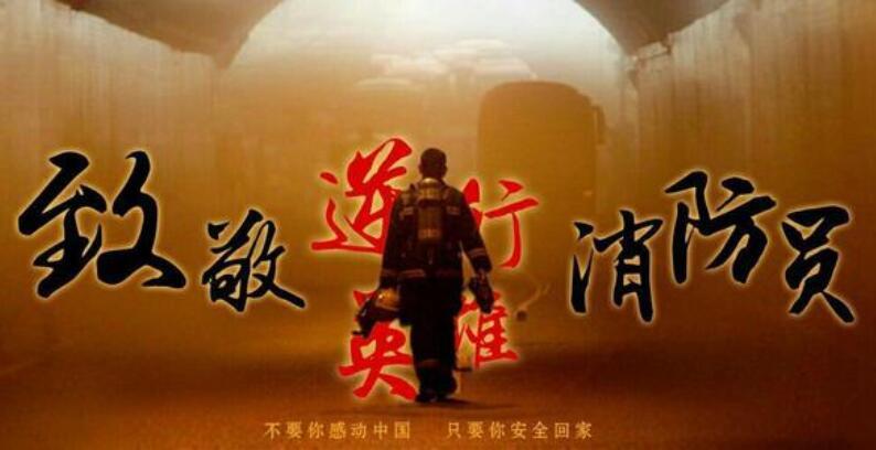 青山为证 浩气长存―悼念3.30木里森林火灾牺牲烈士两周年_中国消防网