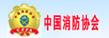 中国消防协会_中国消防公司